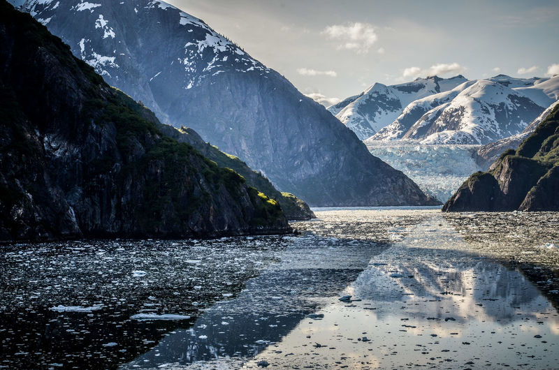 Alaska Beauty In Nature Cold Temperature Fjord Glacier Ice Iceberg Mountain Mountain Range Nature No People Outdoors Sawyer Glacier Scenics Sky Snow Tracy Arm Fjord Alaska Tranquil Scene Tranquility Water