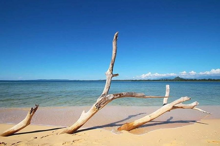The vitamin sea at Lusa Olat island, Moluccas. Beach Pantai Biru Maluku  Pesonaindonesia Wonderfulindonesia
