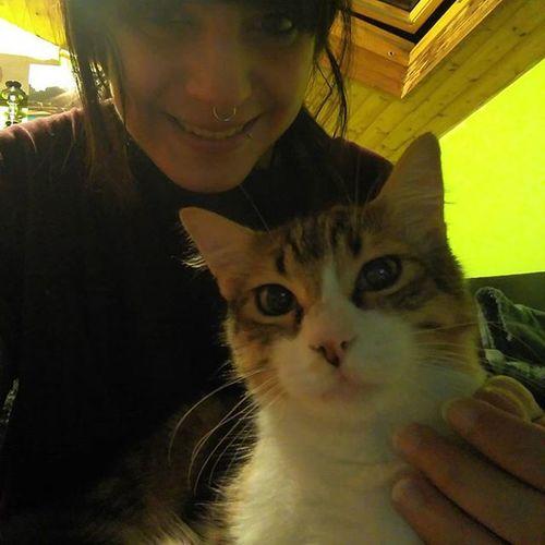 Burton, el gatito más cariñoso, miedica y llorón del mundo😸 Kitten Cats_of_instagram Whiskers Purr Purrfect Miau Meow Catoftheday Photooftheday Ilovemypet Gatitos Gatitosdeinstagram Amorgatuno