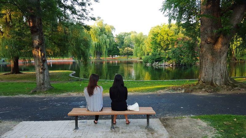 Boston Public Garden  Good Will Hunting