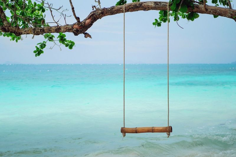 Water Sea Swing Tree Nature Scenics - Nature Plant Rope Swing Beauty In Nature Day Tranquility Playground Land Sky Outdoors Horizon Over Water Tranquil Scene Blue Beach No People