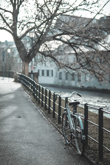 Stay. EyeEm Best Shots EyeEm Selects Streetphotography Backpacking Travel Goodvibes Lifestyles Canon Tree City Water Lake Winter Cold Temperature Fog Sky Bicycle Rack Bicycle Basket Parking Bicycle Bicycle Lane Weather Condition