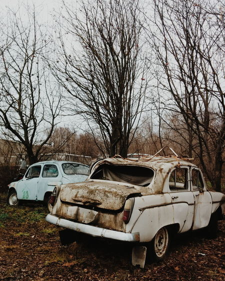 Abandoned car against bare trees