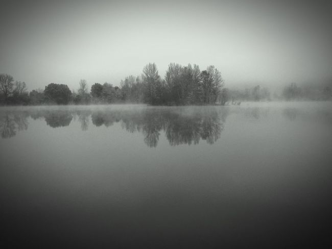 Reflection Nature Tree Tranquil Scene Tranquility Water Clear Sky No People Beauty In Nature Scenics Outdoors Idyllic Sky Day B&w Fog Mistery