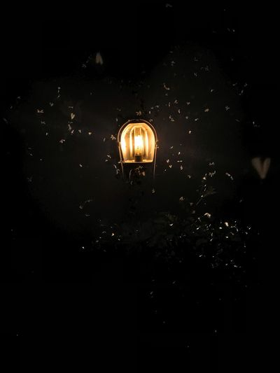 Find light in happiness Nightphotography Illuminated Night Lighting Equipment Dark No People Electricity  Glowing
