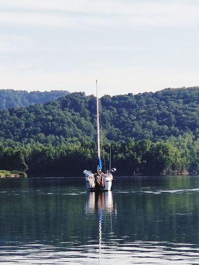 Sailboat Mountains Earlymorningphotography Summertime Summersville Lake Westvirginia Tree Water Nautical Vessel Lake Forest Clear Sky Reflection Sky Fisherman