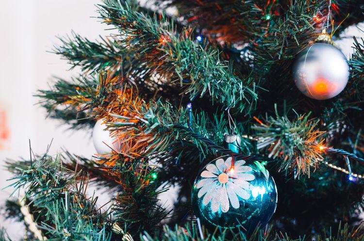Christmas tree Celebration Christmas Christmas Decoration Christmas Ornament Christmas Tree Close-up Glass No People Tree
