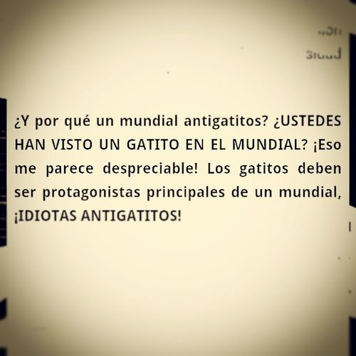 AntiGatitos :( Humornegro xd Cat