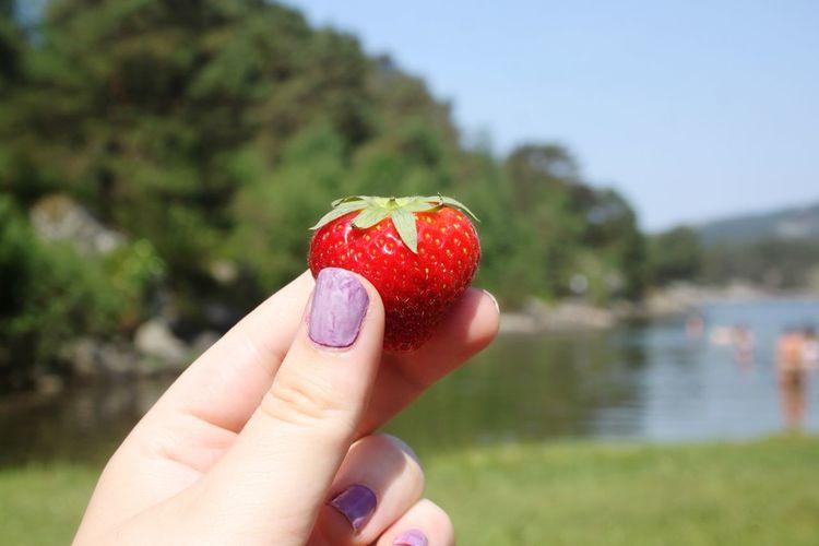 Strawberry Nature EyeEm Selects Human Hand Nail Polish Water Red Women Summer Fingernail Holding Lake