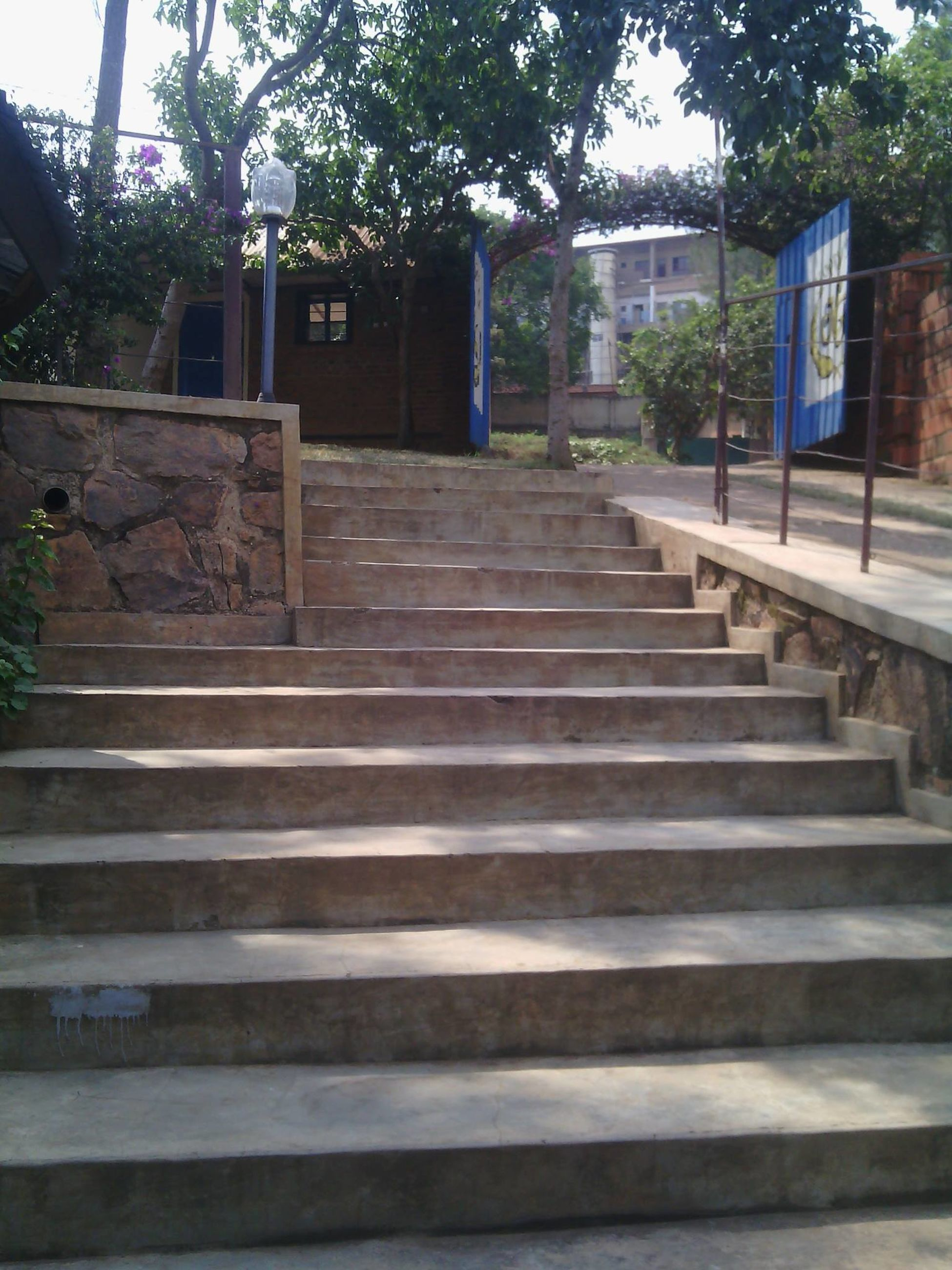 architecture, built structure, building exterior, steps, tree, house, steps and staircases, residential structure, staircase, residential building, the way forward, day, outdoors, sky, no people, stairway