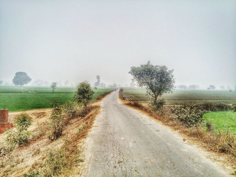 Long Way To Go Kundan Clicks Indian Village Village View Nature Photography EyeEm Nature Lover Hello EyeEm Hello World ✌ The Following Greenery Scenery Village Roads Feel The Journey