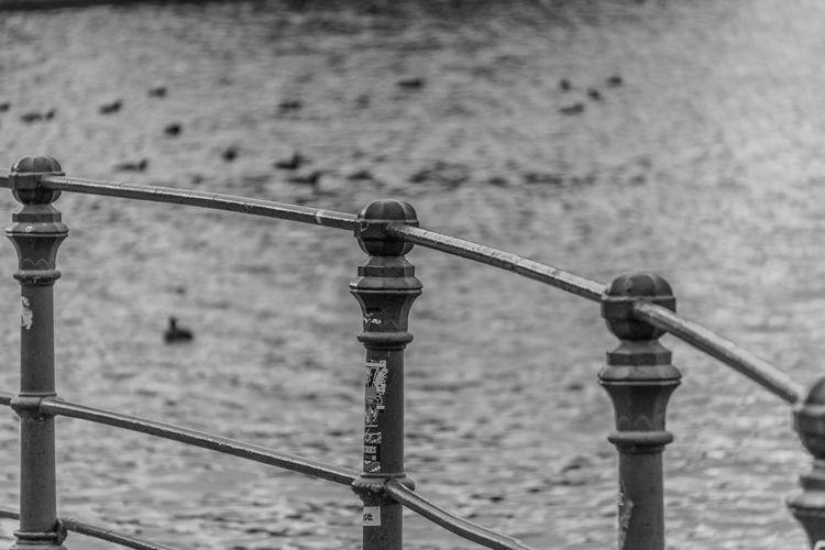 Close-up of fishing rod on railing against sea
