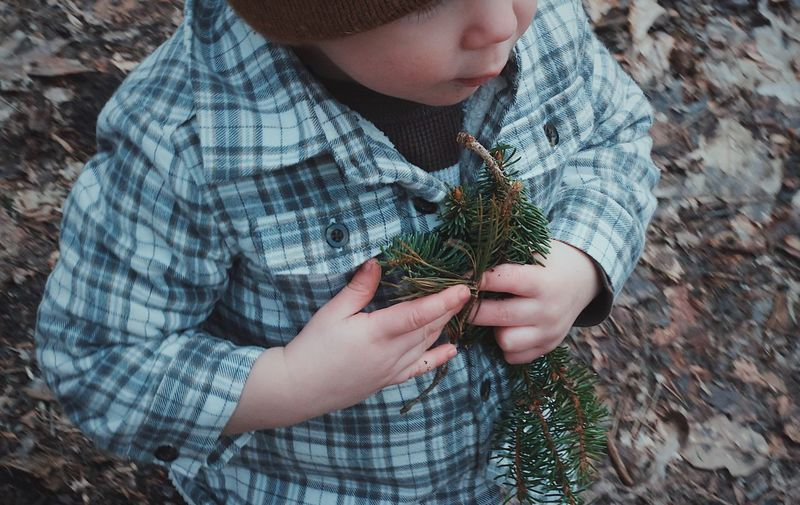 Close-up of boy holding twigs