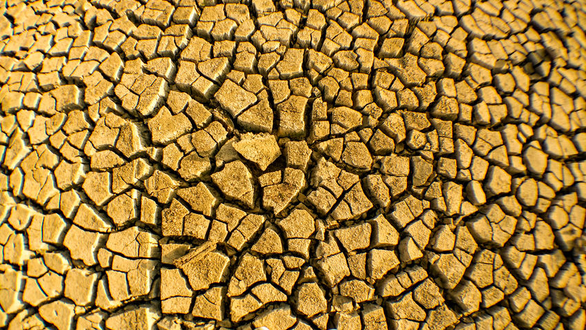 Cracked Textured  Pattern Backgrounds Nature Arid Climate Outdoors Drought Rough Arid Aridlands Aridity Arid Landscape Dry Swamp Swamp Swamp Photos Desert Texture Grunge Texture