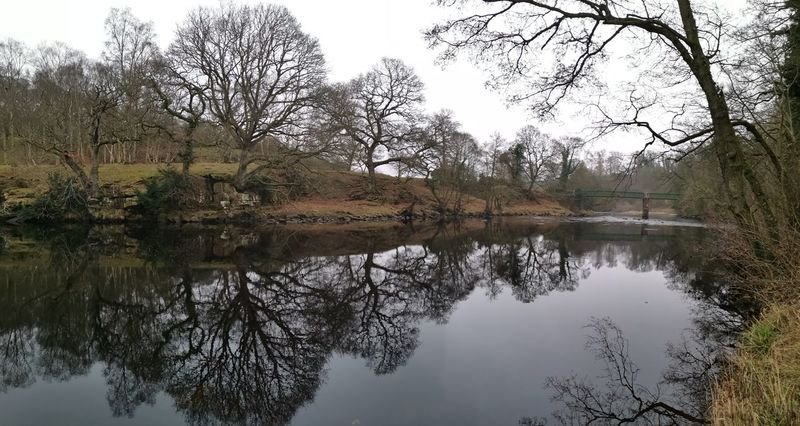Panoramic, straight off the Huawei mate 20 pro Reflection River Trees Eye4photography  Outdoors Walking Hiking Bridge Nature_collection Nature Tree Water Reflection Symmetry Sky Calm Refection