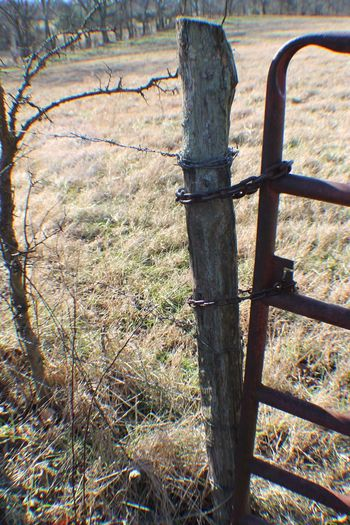 TGI Fence Post Friday The Purist (no Edit, No Filter) Barbed Wire Nature_collection