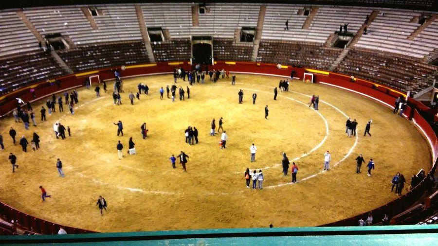 Valenciaenfallas Toros Fallas2015