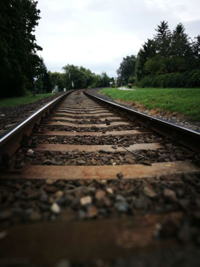 Close-up of railroad track amidst trees against sky