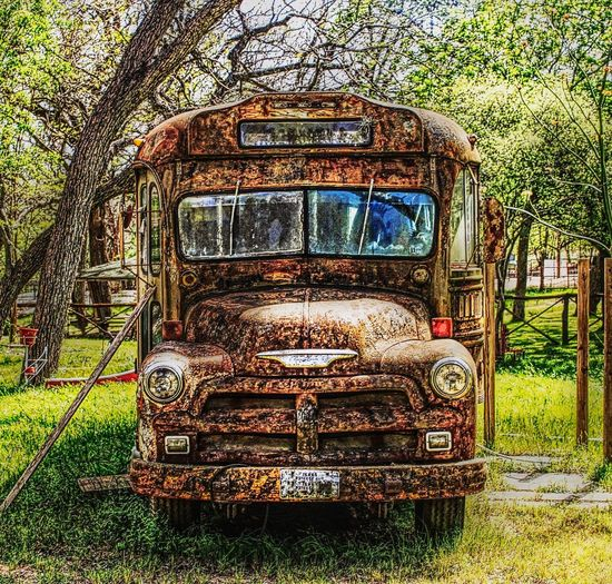 Rusty Relic From The Past Rustic River Road New Braunfels Texas Only In Texas Only In Tx Tree School Bus Bus Vehicle Land Vehicle