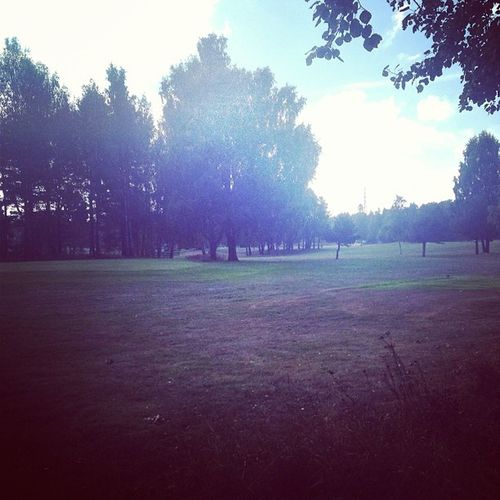 The golf course seems to be empty to-day. Kåbogolfklubb Kåbogk Kåbo Uppsala tiundaland uppland sverige sweden golf golfcourse golfsweden swedishgolf instagolf instafollow tagsforlikes picoftheday