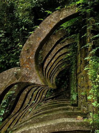 Mexico Pattern Recursion Recursive Sculpture Sculpture Garden Xilitla