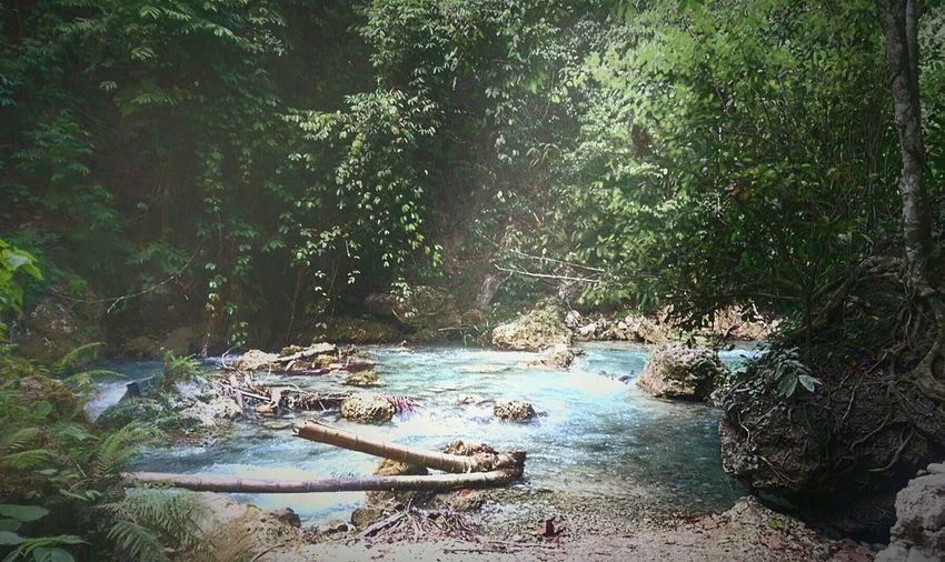 The Great Outdoors With Adobe Kawasan KawasanFalls Kawasan Falls Almost Paradise