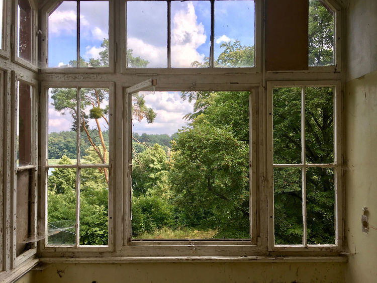 Abadoned Abandoned Places Alone Day Looking Through Window Ruins Tree Window
