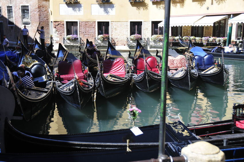 Gondeln Gondola Tourismus Tourism Venedig Venecia Gondeln Gondola Water Wasser Italy Italien Urlaub Holiday Lagoon Lagune Venetian Italy Romantisch Romantic Verliebt In Love Sommer Sommerzeit Summer Transportation Gondola Canal Gondola - Traditional Boat Mode Of Transport Water Venice - Italy Boat Grand Canal - Venice