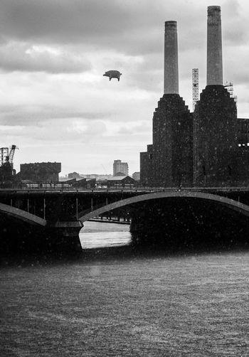 Anniversary Battersea Battersea Power Station Blackandwhite Photography Bridge Flying Pig Music Pig Pink Floyd Rain Thames Black And White Friday