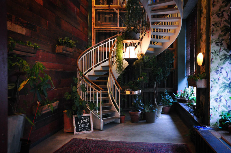 Architecture Berlin Cozy Place Design House Of Small Wonder Indoor Plants Jungle Staircase