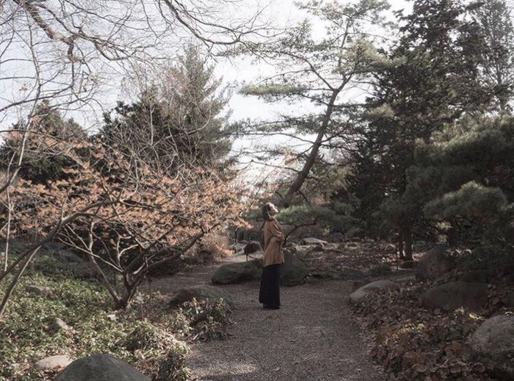 Perspective of Illumination, 2018. BrooklynBotanicGarden Fineartphotography Perspectiveofillumination Rockgarden Landscape Brooklyn Ericajay Subject