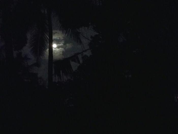 Midnight window view