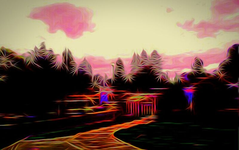 Light Trail Illuminated Home From My Point Of View What I Saw Community In Front Of Multi Colored Outdoors Sky The Way Forward Streamzoofamily TakeoverContrast The Week On EyeEem Oregon Mello EyeEm Best Shots Gatedcommunity Vibrant Color Nature Freshness Idyllic Focus On Foreground Shootermag