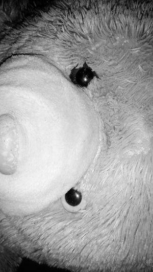 #doll #bear