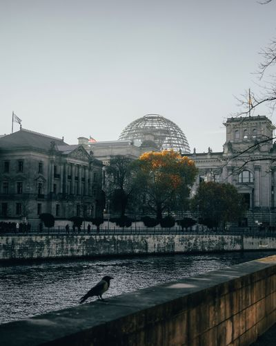 Moody Reichstag
