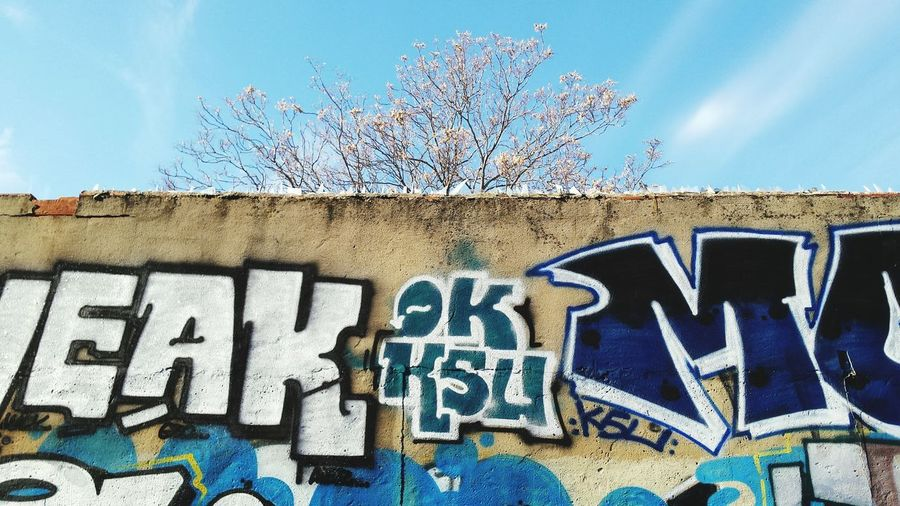 Graffiti Wall Nature Details Sky And City Urban Communication City Life Self Expression Streetart Street Street Photography Showcase: January Nature Sky Urban Spring Fever
