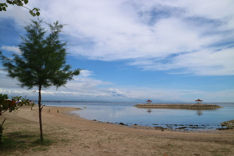 Small tree at Karang Beach, Sanur, Denpasar, Bali - December 2017 Horizon Over Water Outdoors No People Tranquil Scene Tranquility Day Transportation Palm Tree Beauty In Nature Nautical Vessel Tropical Climate Scenics - Nature Nature Beach Land Plant Sea Tree Cloud - Sky Sky Water My Best Photo