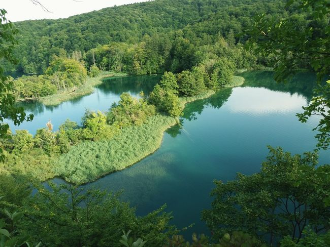 Lake Lakes  Nature Water High Angle View Day Green Color Tree No People Outdoors Beauty In Nature Landscape Croacia Croatia Natural Parks Plitvice Lakes National Park Llacs