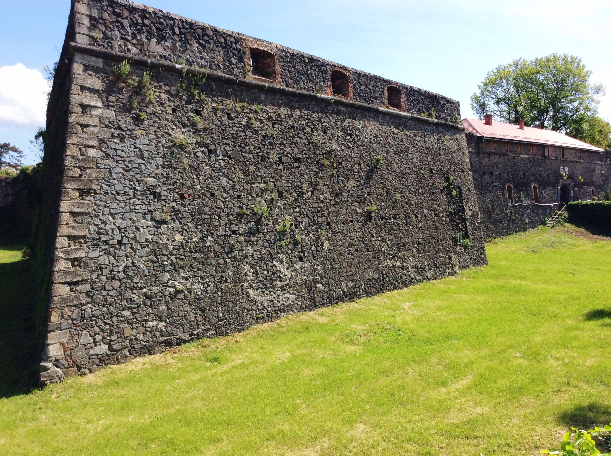 grass, architecture, built structure, wall - building feature, building exterior, sky, day, lawn, the past, growth, surrounding wall, green color, outdoors, history, yard, weathered, stone material, no people, grassy, fortified wall, footpath, fort