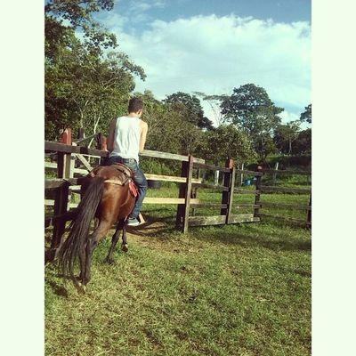 mas que una carrera , es una pasión. Horse Zootecnia .