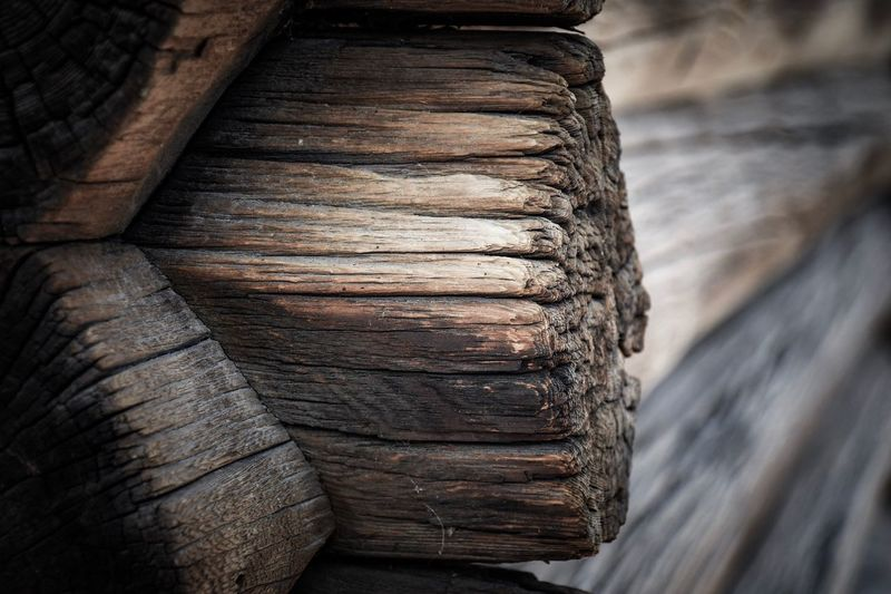 EyeEm Selects Tire Textured  Wood - Material Brown Day No People Close-up Outdoors