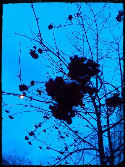 Violet By Motorola Melancholic Landscapes