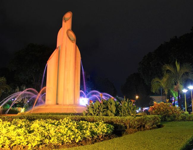 This is my city, the initial history of my city stands with various struggles Statue Surabaya Architecture Flower History Historyclass Illuminated Light - Natural Phenomenon Lighting Equipment Nature Night No People Outdoors Plant Sculpture Sky Surabaya City Surabaya Eyeem Indonesia Indonesia_photography Tree