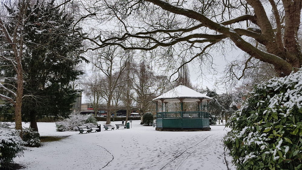 Check This Out Hello World Taking Photos Happy Winter Snow Park Band Stand Victoria Park Stafford Town Snow Covered Winter Cold White Beauty In Nature Beautiful Walking Around Snow Cold Temperature Winter Nature Tree