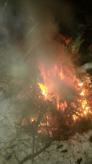 A Little Fire On The Snow Smoke - Physical Structure Outdoors Night Feu Sous Un Grand Sapin Winter Quebec