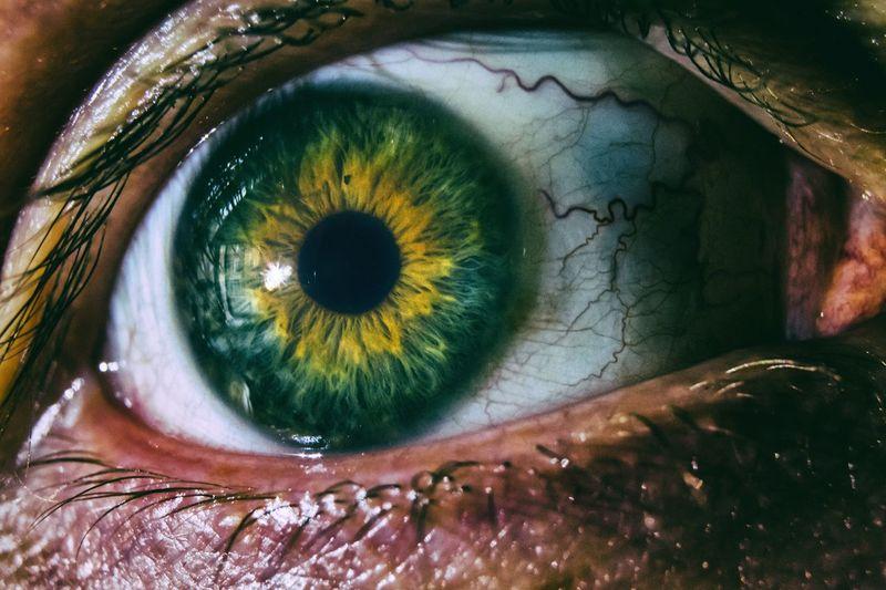 Evil eye Eye Human Eye Close-up Extreme Close-up Eyelash Eyeball Zombie Scary Macro Walking Dead Moment Eyesight Person Green Color Extreme Close Up Full Frame