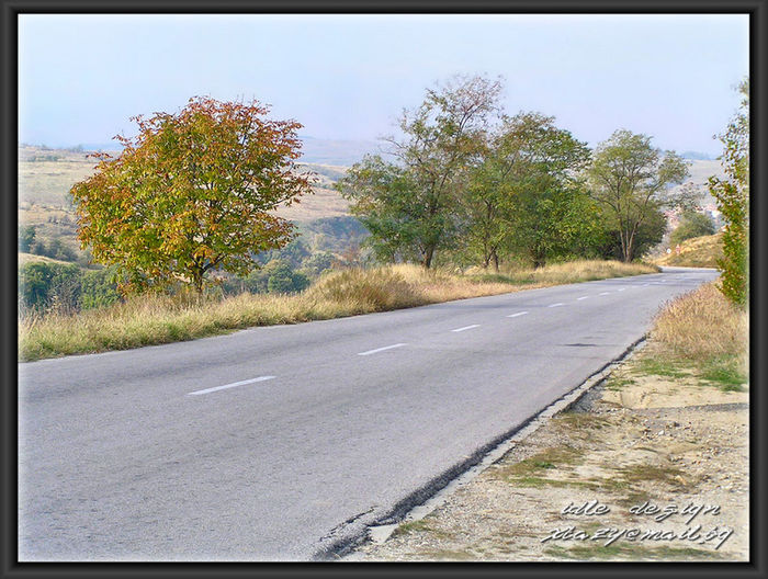 Road passing through country road