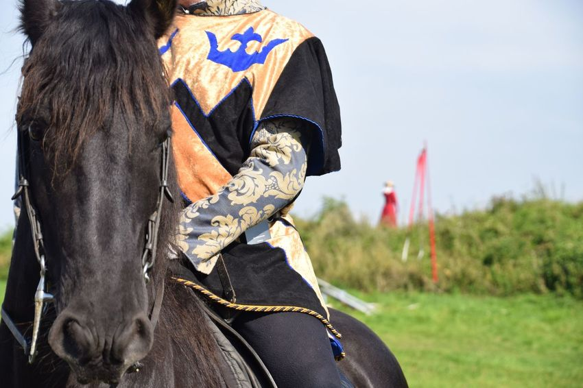EyeEm Selects Horse One Animal Horseback Riding Day Outdoors One Person Domestic Animals Men Adult Mounted Medieval Festival Jousting People Close-up Friesian Friesian Horse