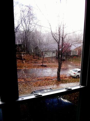 Rainy Day 2014