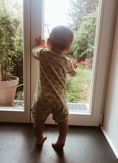 Childhood Child One Person Full Length Baby Window Real People Young Standing Indoors  Day Babyhood Toddler  Glass - Material Innocence